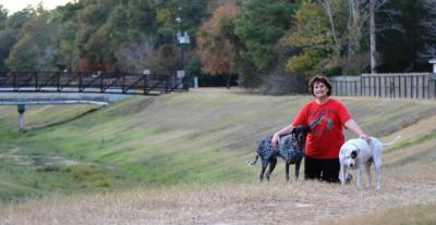 Tucker, me and Patsy from our old gully days. Dog walks have changed without my high maintenance princess.